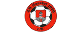 SV Naunhof 1920